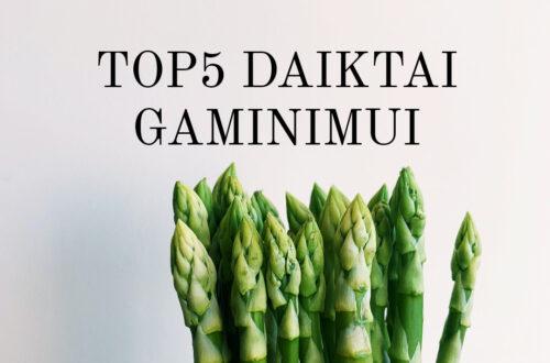 TOP5 DAIKTAI GAMINIMUI – APŽVALGA